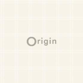 Orygin  4210