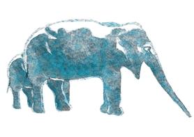 AQUA ELEPHAS 2011