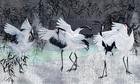 tapeta wonderwall storks
