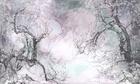 wonderwall sakura