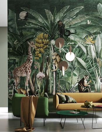 wonderwall safari